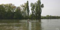 bassin_la_pointe